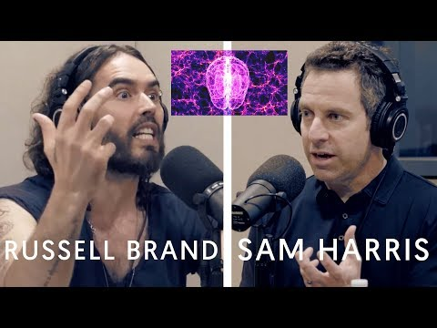 The Science Of Consciousness   Russell Brand & Sam Harris