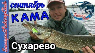 Рыбалка в д  Сухарево HD