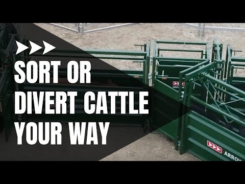 Cattle Sorting Alley | One And Two-Way Cattle Sorting | Arrowquip