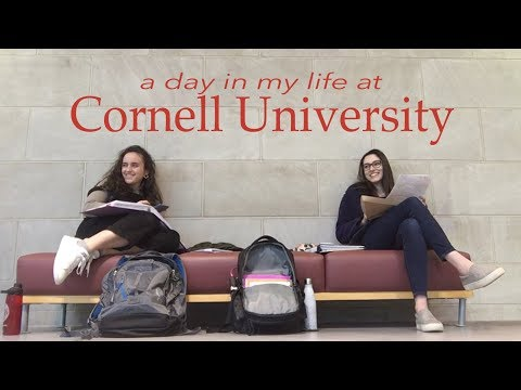 Day in the Life of a Cornell Hotel School Student