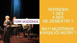 Türk Müziğinde 1 Ses, 4 Ses Nedir Batı Müziğinde Karşılığı Nedir ?