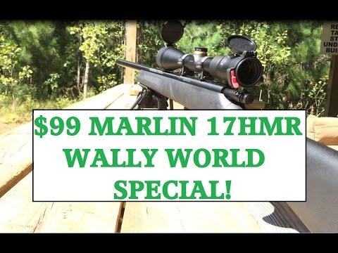 $99 17HMR wally world special fun in the sun!