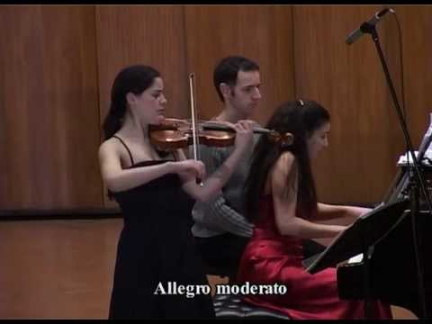 "Schubert: Sonata for Violin and Piano""Grand Duo"" 1st Movement"
