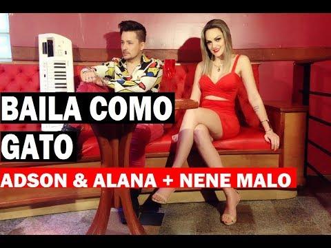Adson e Alana + Nene Malo - Baila Como Gato ( Clipe HD Oficial ) #Lancamento2017