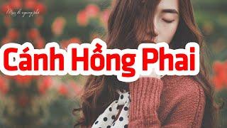 Cánh Hồng Phai - Hồng Nhật