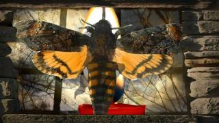 Watch Jethro Tull Moths video