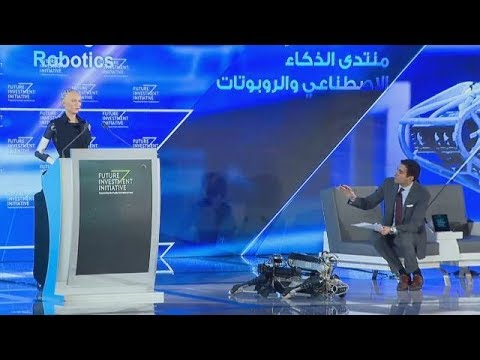 DAY2 - Thinking machines: Summit on artificial intelligence and robotics