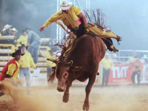 BETO PEREIRA - Furacão, o touro ino ( verso - poema)