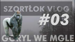 SzortŁok Vlog #03 - Goryl we mgle, Bory, Zoriuszka, brak kawy, dzik i orzeł...