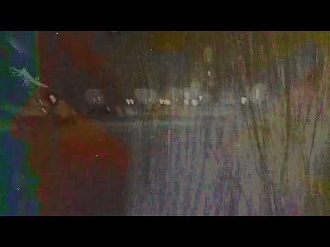 TS Bright - The Wild Iris Plain (Music Video)