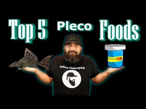 My Top 5 Favorite Pleco Foods