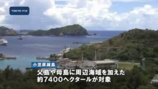 小笠原諸島の世界自然遺産登録 国際自然保護連合調査団が来日