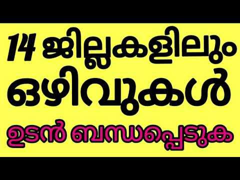 Kerala Job Vacancy  17 / 8 / 2020