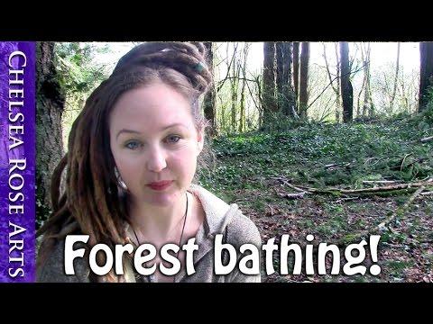 Hangout Vlog - Shinrin-Yoku or Forest Bathing