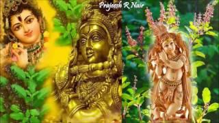 thulasikathir-nulliyeduthu-kannanoru-malakkayi-thulasikathir-prajeesh