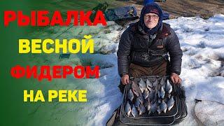 Рыбалка 2021 Рыбалка ранней весной Лещ на реке