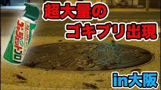 大阪難波のマンホールにゴキジェットかけたら超大量のゴキブリが出現www【大パニック】