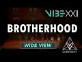 [1st Place] Brotherhood | VIBE XXII 2017 [@VIBRVNCY 4K] #vibedancecomp