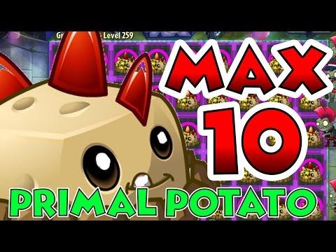 Plants vs Zombies 2 Max Level UP - Primal Potato MIne Level 10 Maximum Level