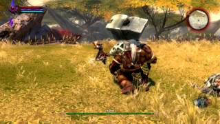Kingdoms of Amalur: Reckoning PC Gameplay *HD* Max Settings