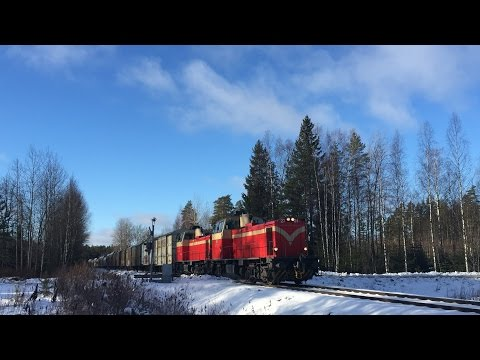 [VR Transpoint] class Dv12 diesels pulling freight train T3533...