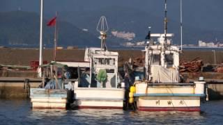 のどかな漁港.