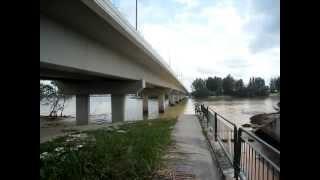 Under Seletar North Link Bridge Fishing ...