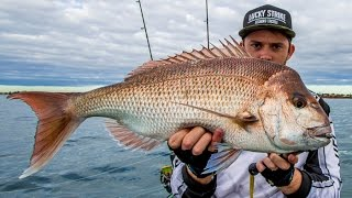 Kayak Fishing Moreton Bay-Snapper