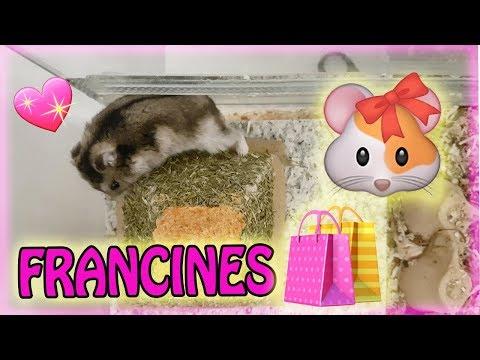 François live ❤ Francines Einkauf