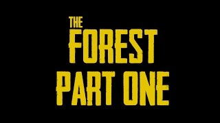 The Forest - Walkthrough Part 1 (No commentary)