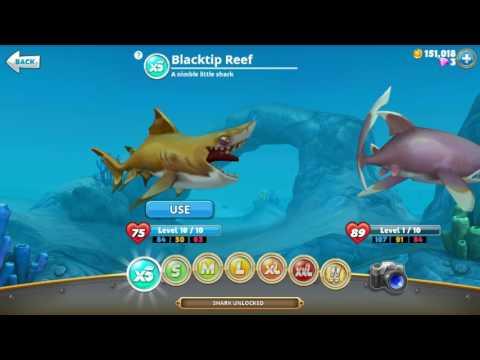 Hungry shark world - great white sharks price