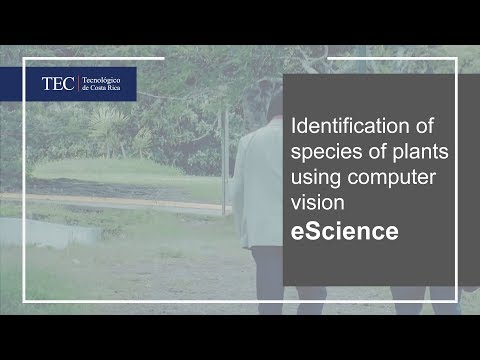eScience - Identification of species of plants using computer vision