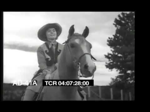 Arabian Horse Farm (1940s)