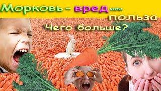 Морковь - вред или польза. Чего больше ?