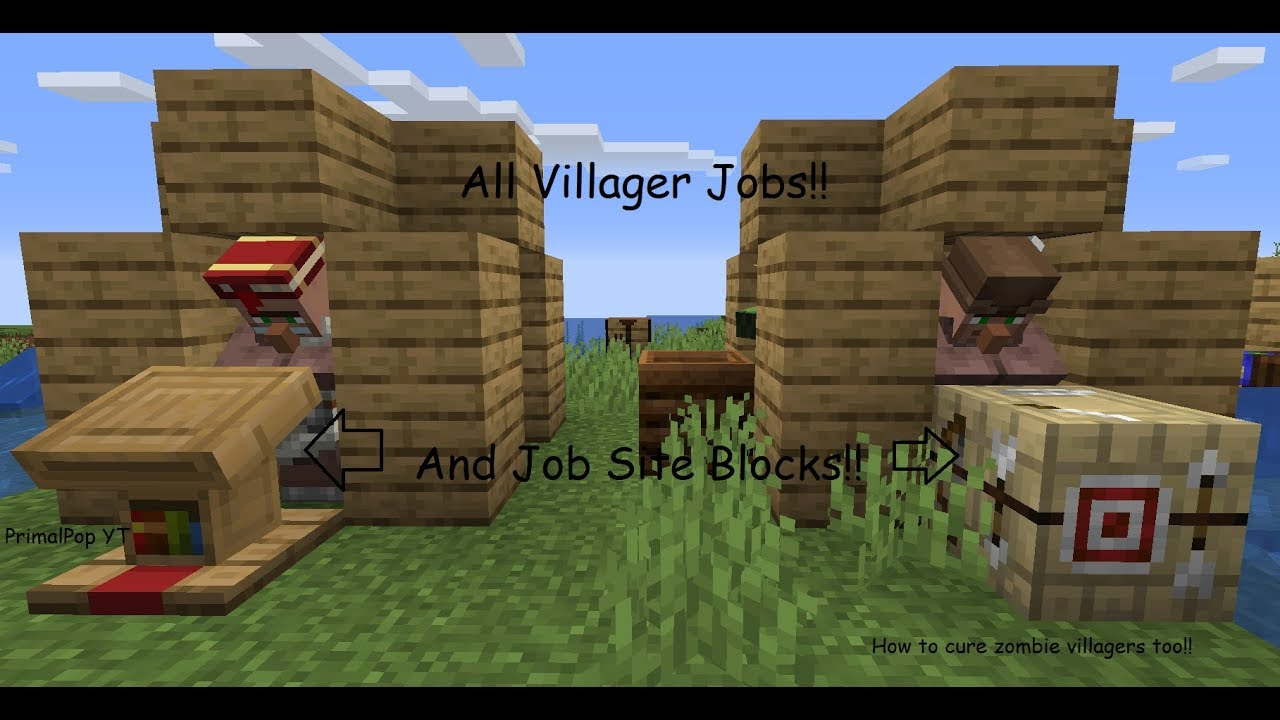 ALL VILLAGER JOBS and JOB SITE BLOCKS!  Minecraft