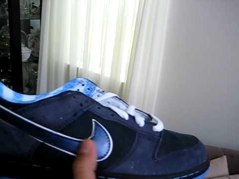 Nike Dunk SB Blue Lobster - YouTube