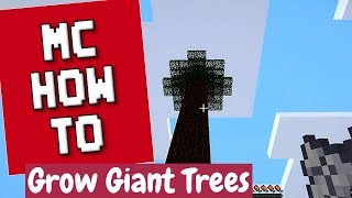 How To Grow Giant Trees and Harvest Them - Minecraft Tutorial