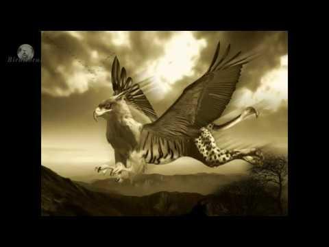 Extraterestrii lui Lazar Gog (audio)