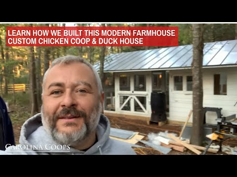 Learn How We Built a Modern Farmhouse Chicken Coop and Duck House