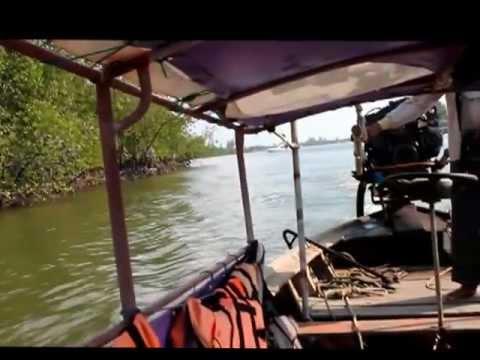 Краби таун - мангровый лес и рыбацкая ферма