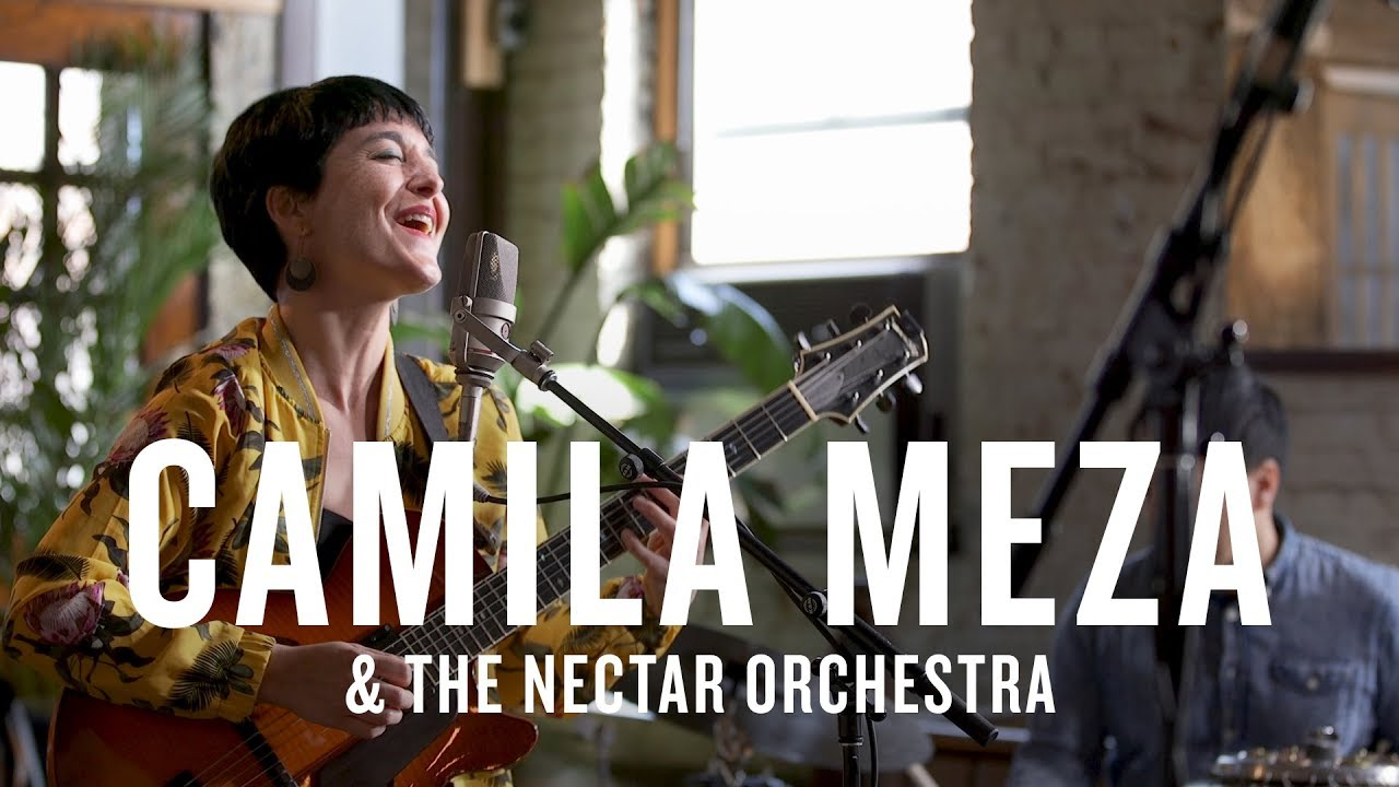 Artwork representing Camila Meza & The Nectar Orchestra: Jazz Night in America (Live)