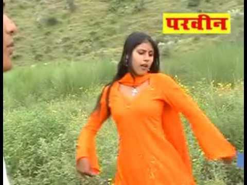 Old Mewati Parveen Tu Matja Draiwar