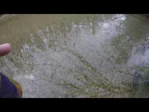 2016 creek hunt jackson county alabama