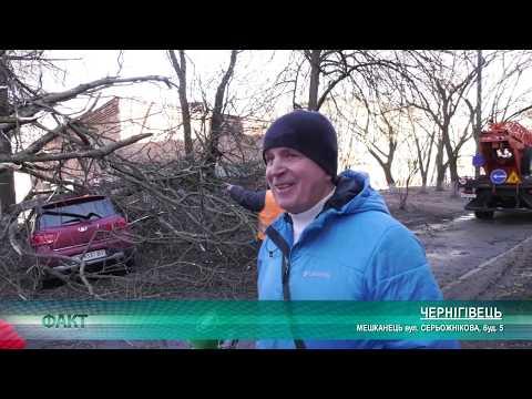 Телеканал Новий Чернігів: Повалені дерева, зірвані дахи| Телеканал Новий Чернігів