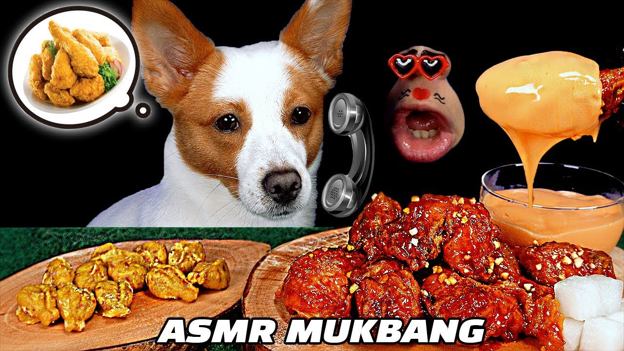 [ASMR MUKBANG] Chicken specially made for Puppy & Dog Real Sound Eating Show! ??