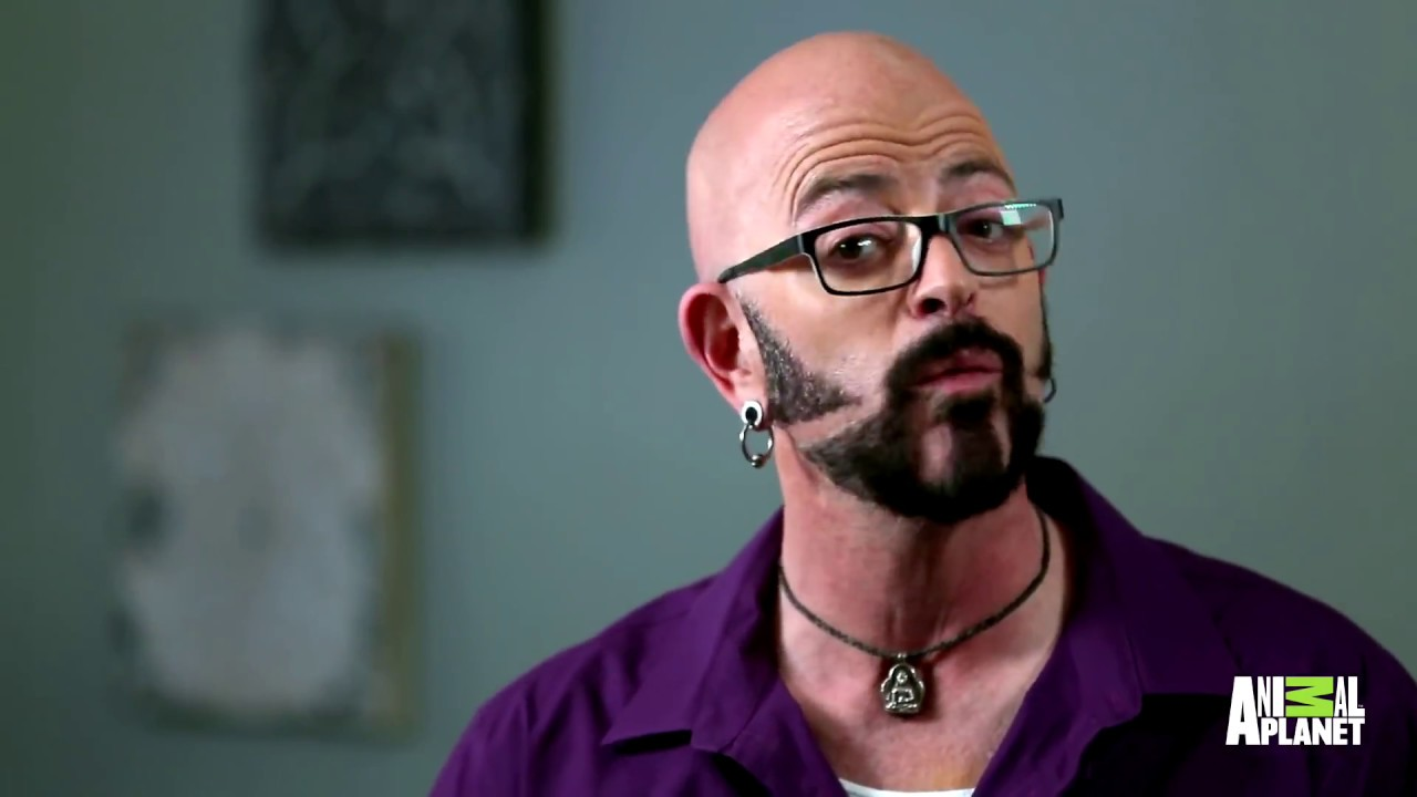 How long can jackson galaxy stay in the ring with this for Jackson galaxy images