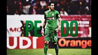 Jaime Penedo  • READY FOR THE WORLD CUP  - Best Saves 2017