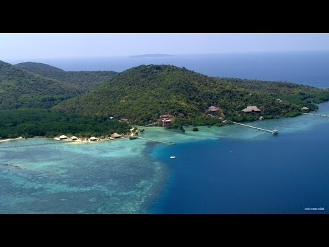 Dive relax at coral bay beach and dive resort coron - Sanom beach dive resort ...