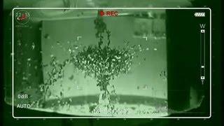 видео Демонстрация опытов