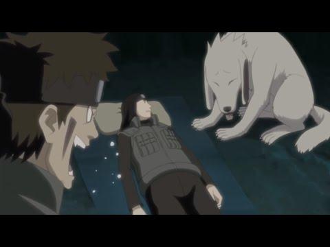 Funny Moment - Neji Mistakes Akamaru for Kiba - Naruto Shippuuden